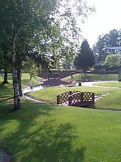 午後の芝生.jpg