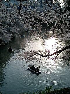 小舟.jpg