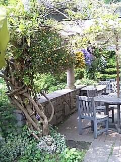 English Garden 美しき藤の木.jpg