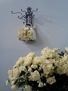 白いバラ.jpg