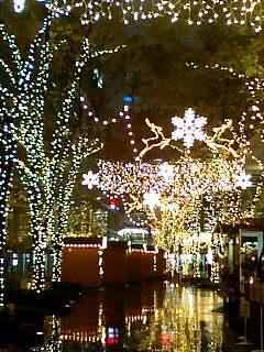 クリスマス・イルミネーション.jpg