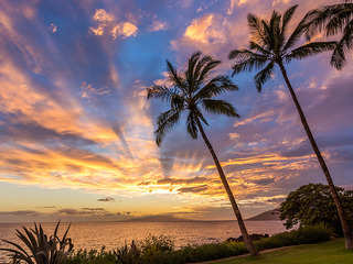 Hawaii 夕日.jpg