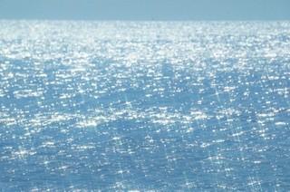 Sea 輝く水面.jpg